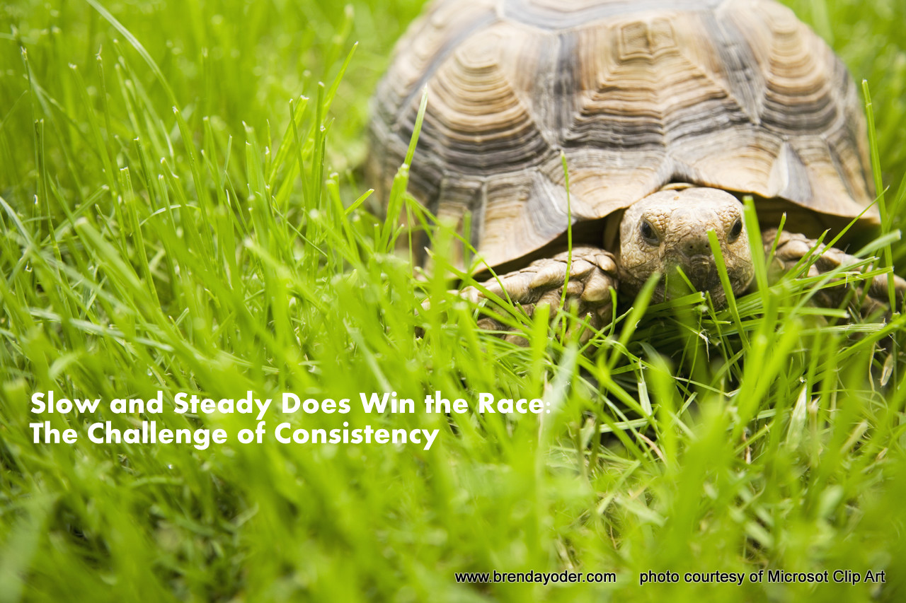 Slow and Steady Does Win the Race: The Challenge of Consistency