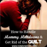mommy-meltdown-NAM-pic