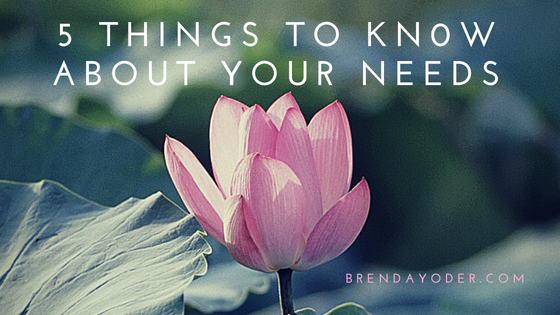 5 Things to Know About Your Needs