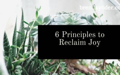 6 Principles to Reclaim Joy