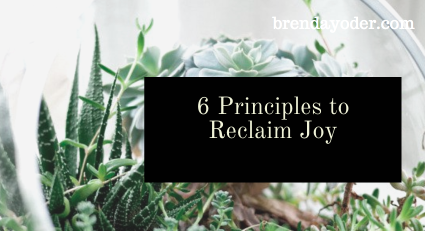 6 Principles to Reclaim Joy