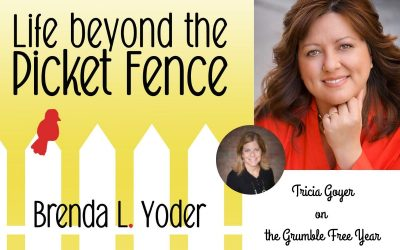 The Life beyond the Picket Fence Podcast with Tricia Goyer part 2